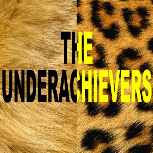 What Went Right With... The Underachievers - Cellar Door Album - Lion and Leopard skin illustration